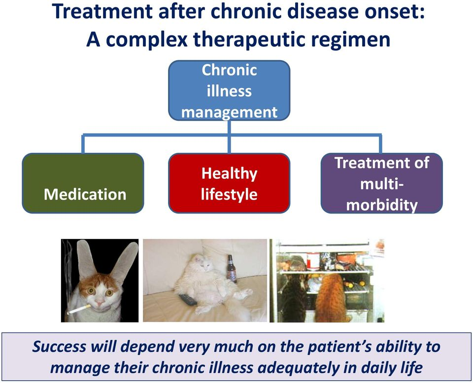 lifestyle Treatment of multimorbidity Success will depend very much on