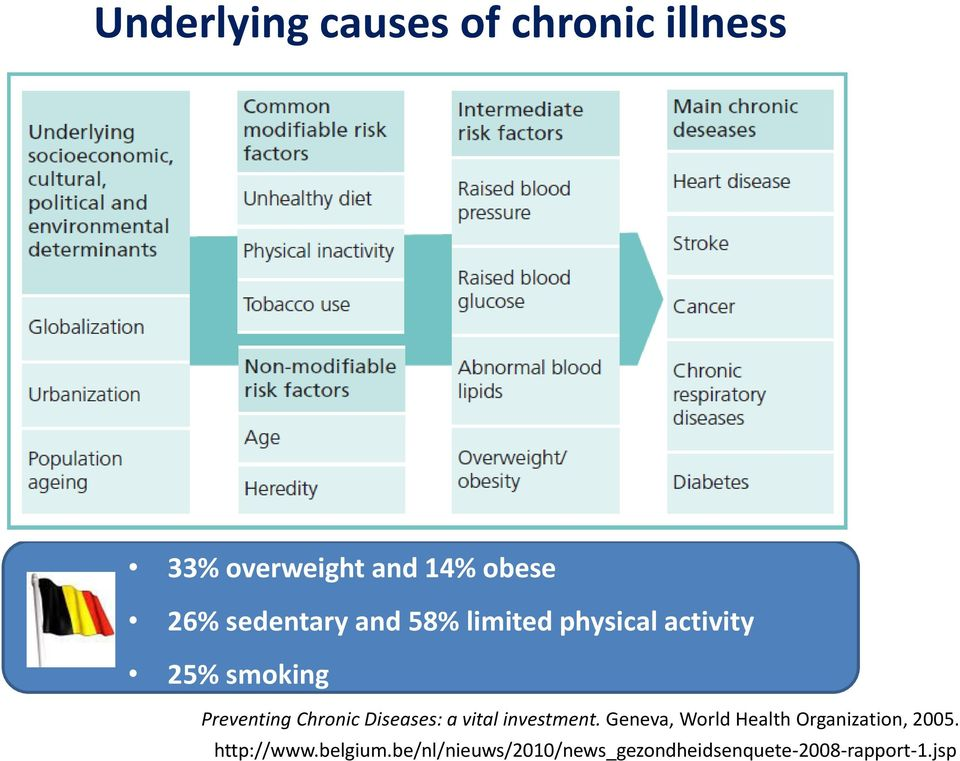 Chronic Diseases: a vital investment.