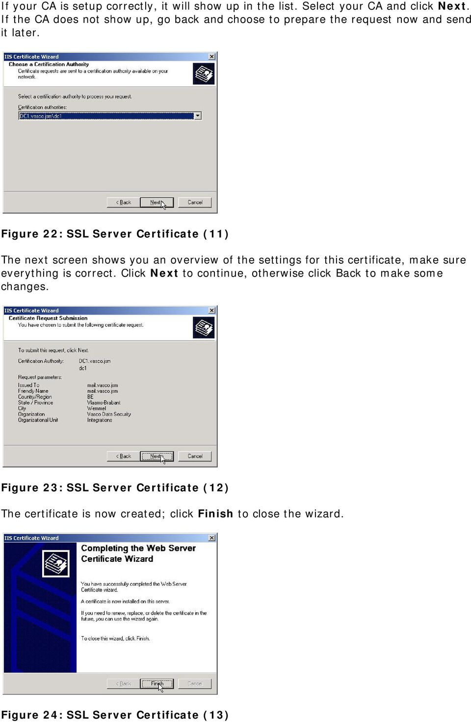 Figure 22: SSL Server Certificate (11) The next screen shows you an overview of the settings for this certificate, make sure everything