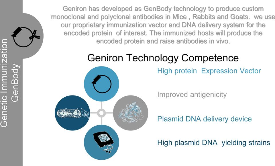 we use our proprietary immunization vector and DNA delivery system for the encoded protein of interest.