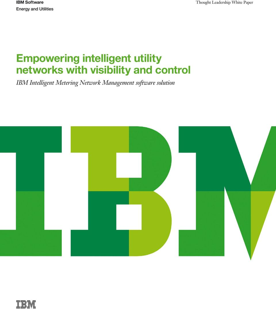 utility networks with visibility and control IBM
