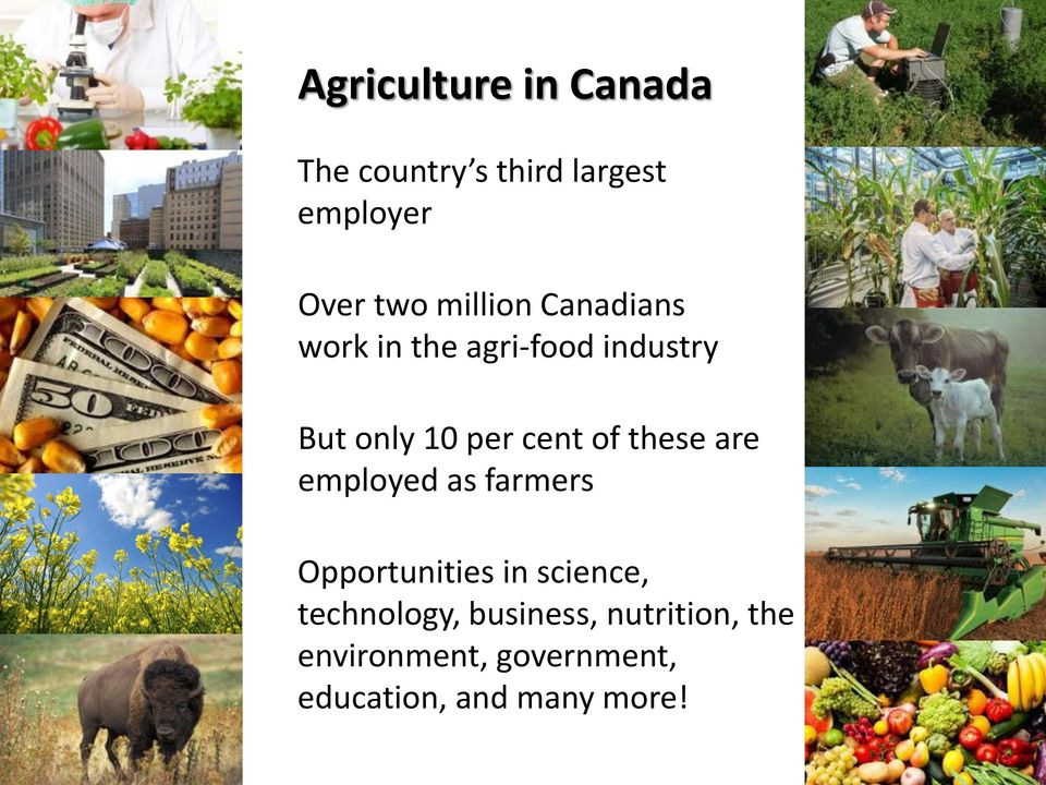 of these are employed as farmers Opportunities in science, technology,