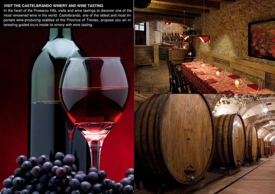 Castelbrando, one of the oldest and most important wine-producing realities of the