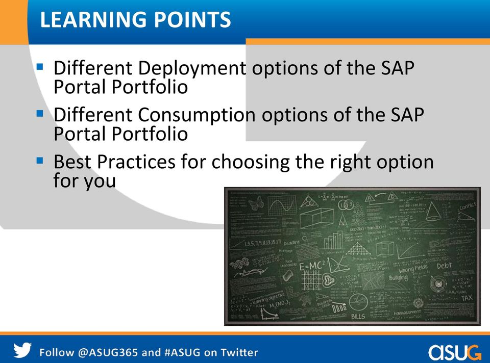Consumption options of the SAP Portal