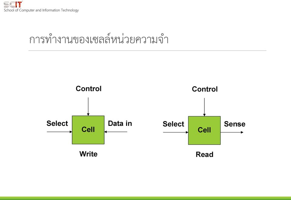 Control Select Cell