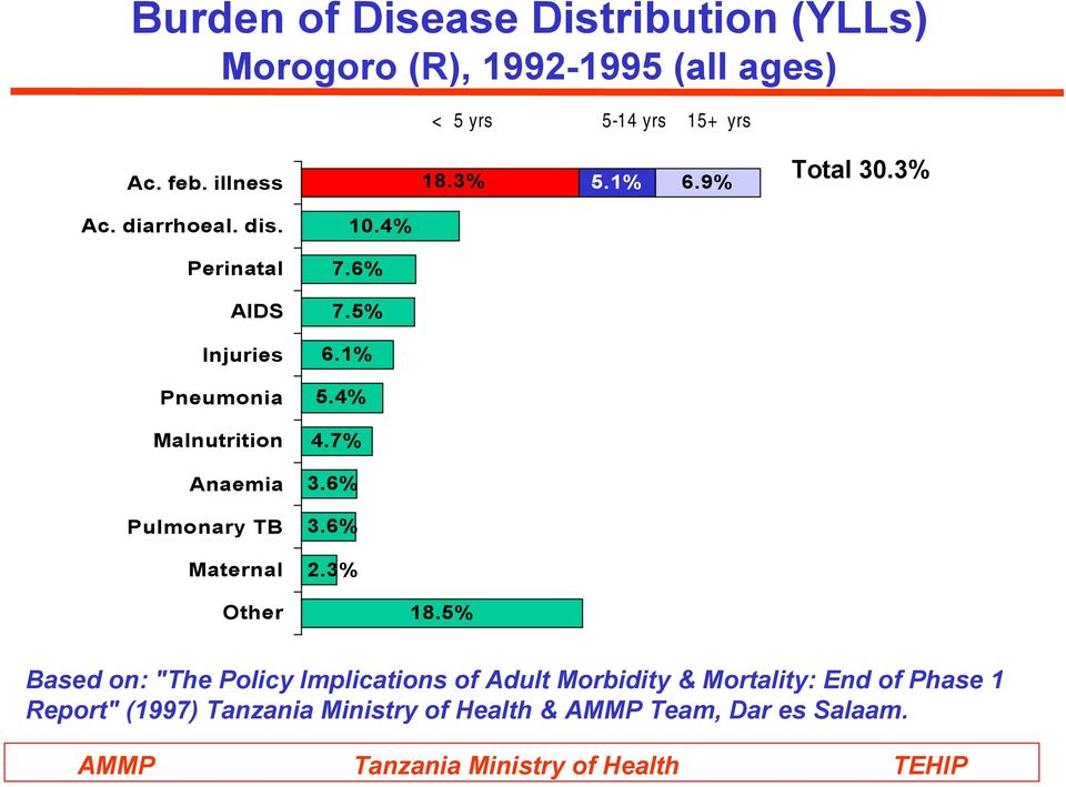 Perinatal AIDS Injuries Pneumonia Malnutrition Anaemia Pulmonary TB Maternal Other 10.4% 7.6% 7.5% 6.1% 5.4% 4.