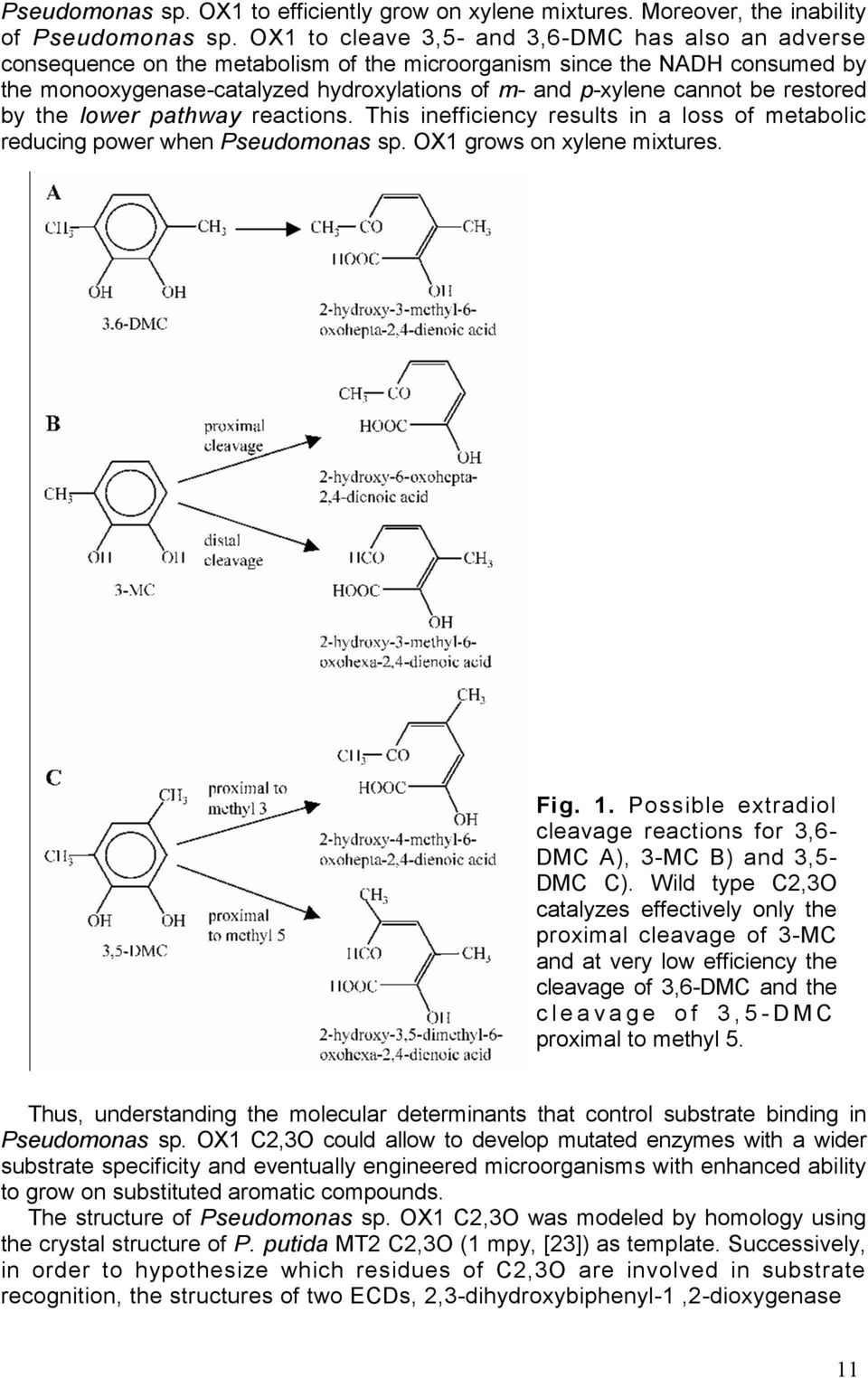 be restored by the lower pathway reactions. This inefficiency results in a loss of metabolic reducing power when Pseudomonas sp. OX1 grows on xylene mixtures. Fig. 1.