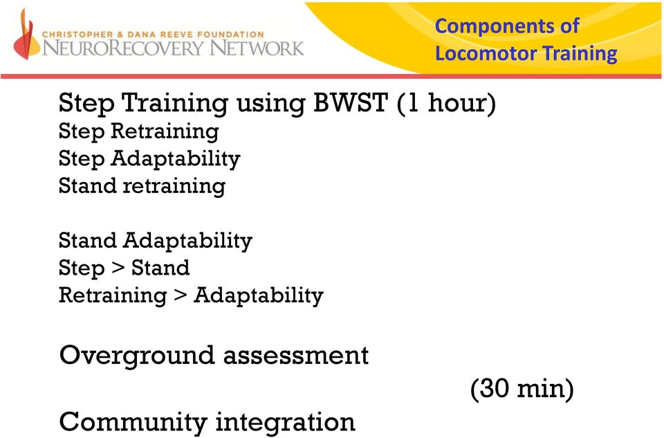 Stand Retraining > Adaptability Components of Locomotor