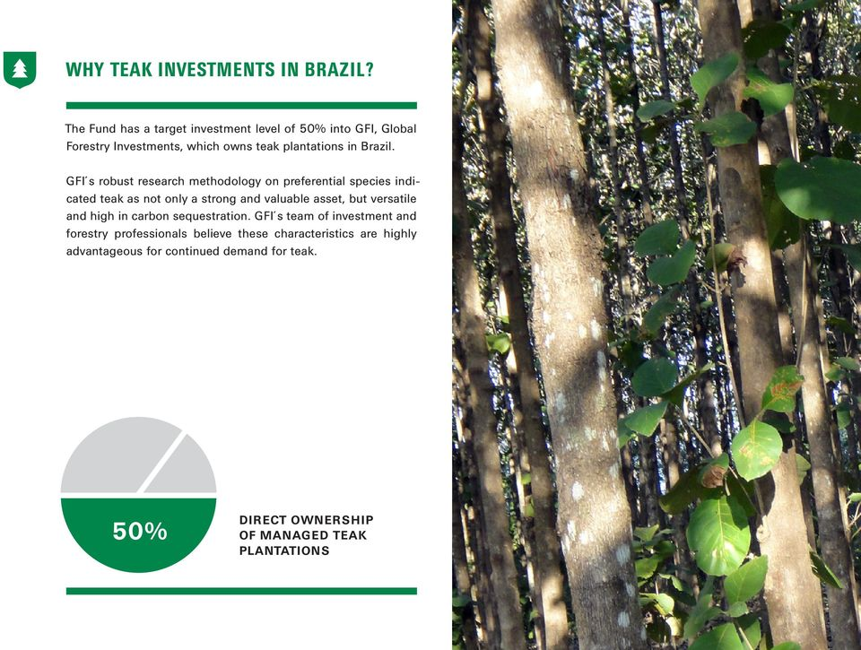 J&O GLOBAL FORESTRY INVESTMENT FUND SUSTAINABLE AND