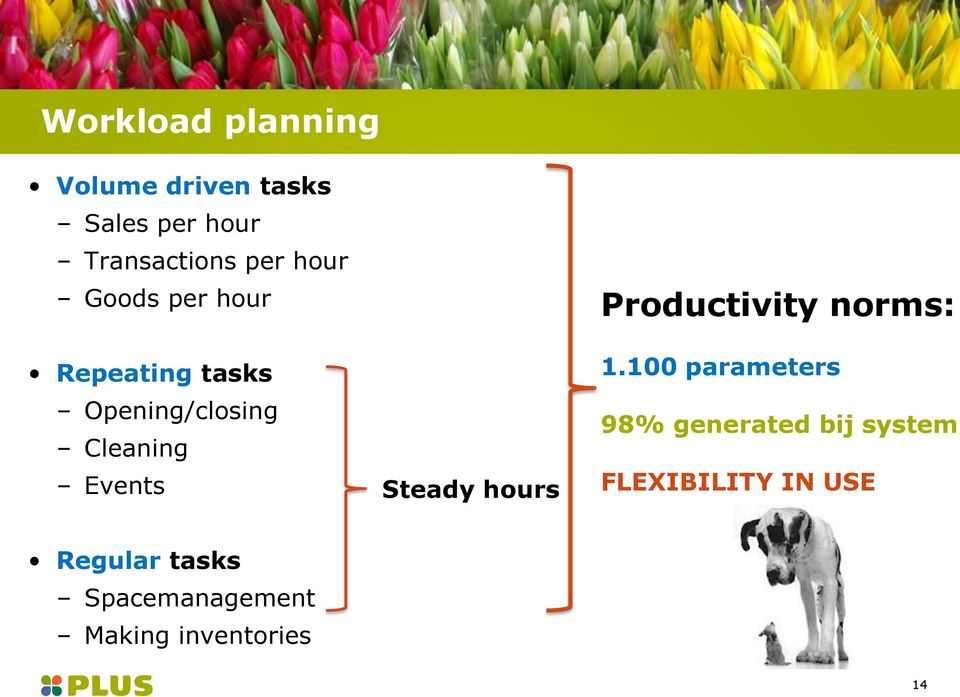 Steady hours Productivity norms: 1.