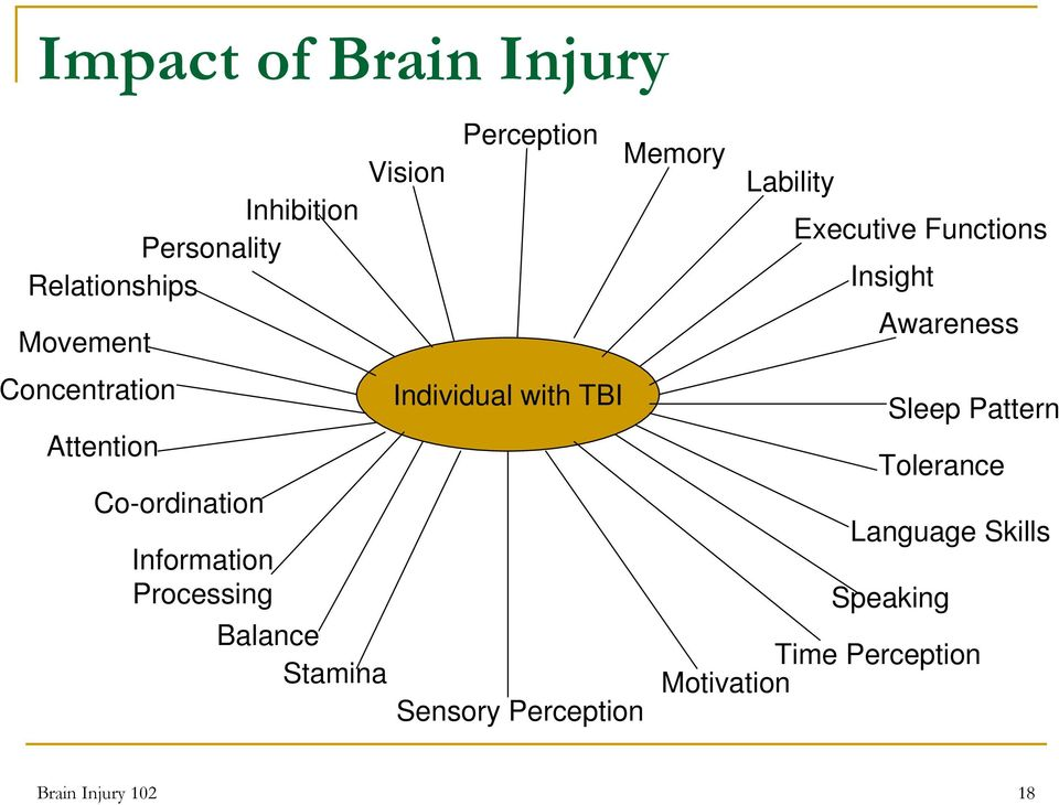 Individual with TBI Sensory Perception Memory Lability Executive Functions Insight