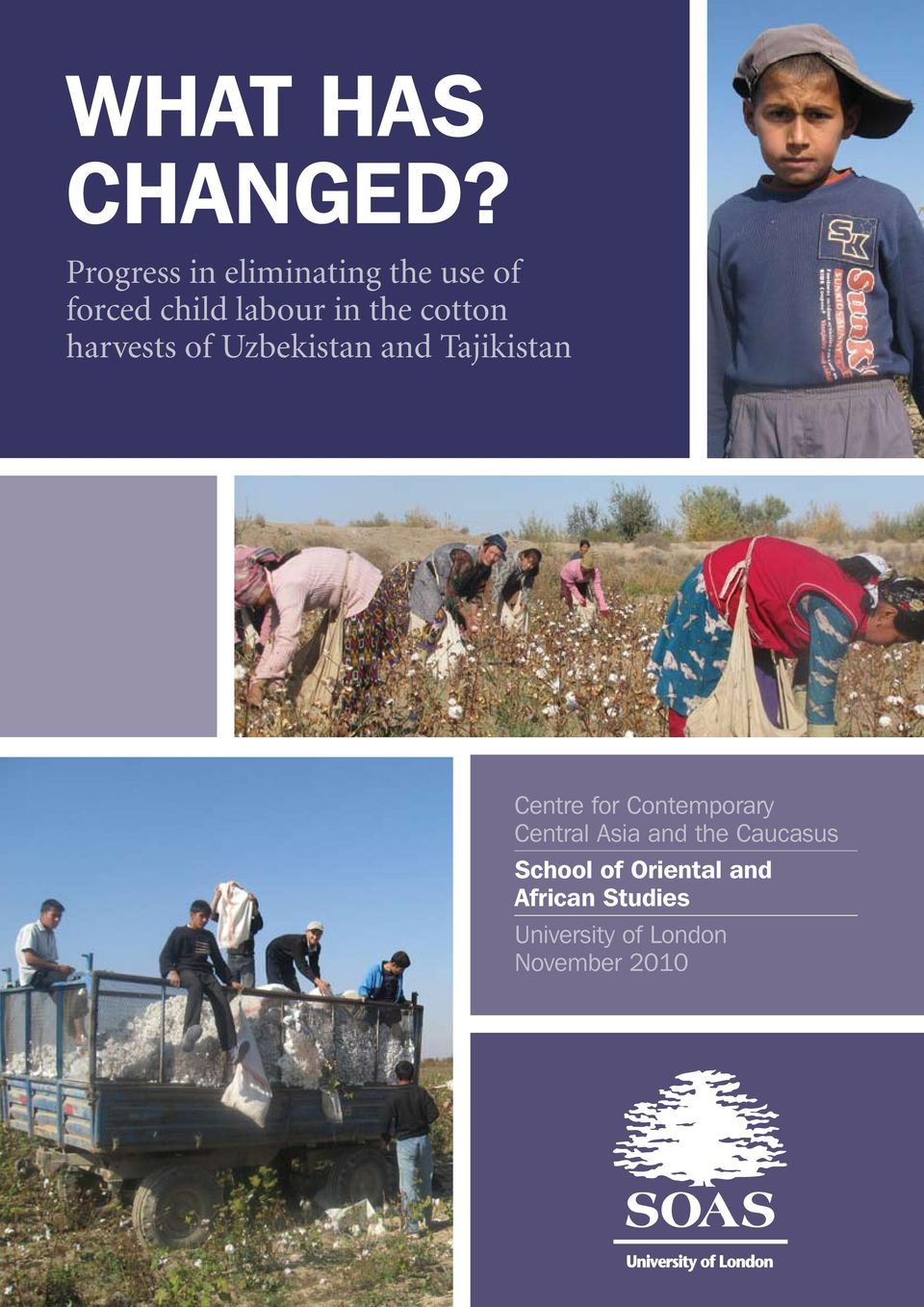 cotton harvests of Uzbekistan and Tajikistan Centre for