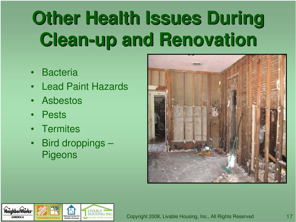 Bacteria Lead Paint Hazards