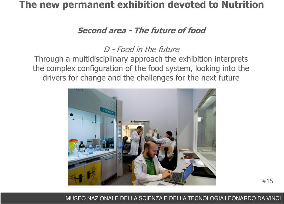 approach the exhibition interprets the complex configuration of the food