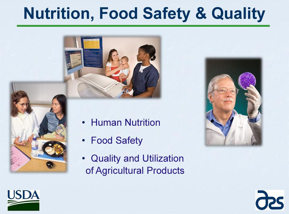 Food Safety Quality and