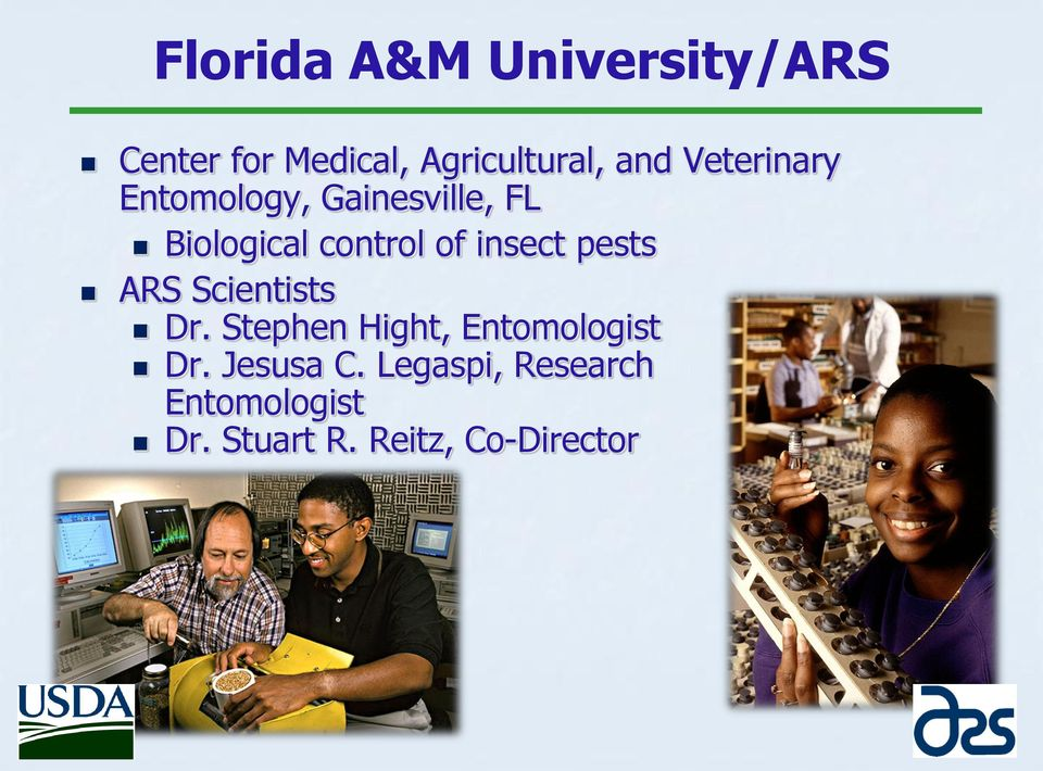 insect pests ARS Scientists Dr. Stephen Hight, Entomologist Dr.