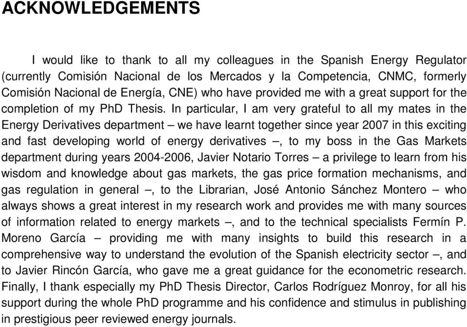 In particular, I am very grateful to all my mates in the Energy Derivatives department we have learnt together since year 2007 in this exciting and fast developing world of energy derivatives, to my