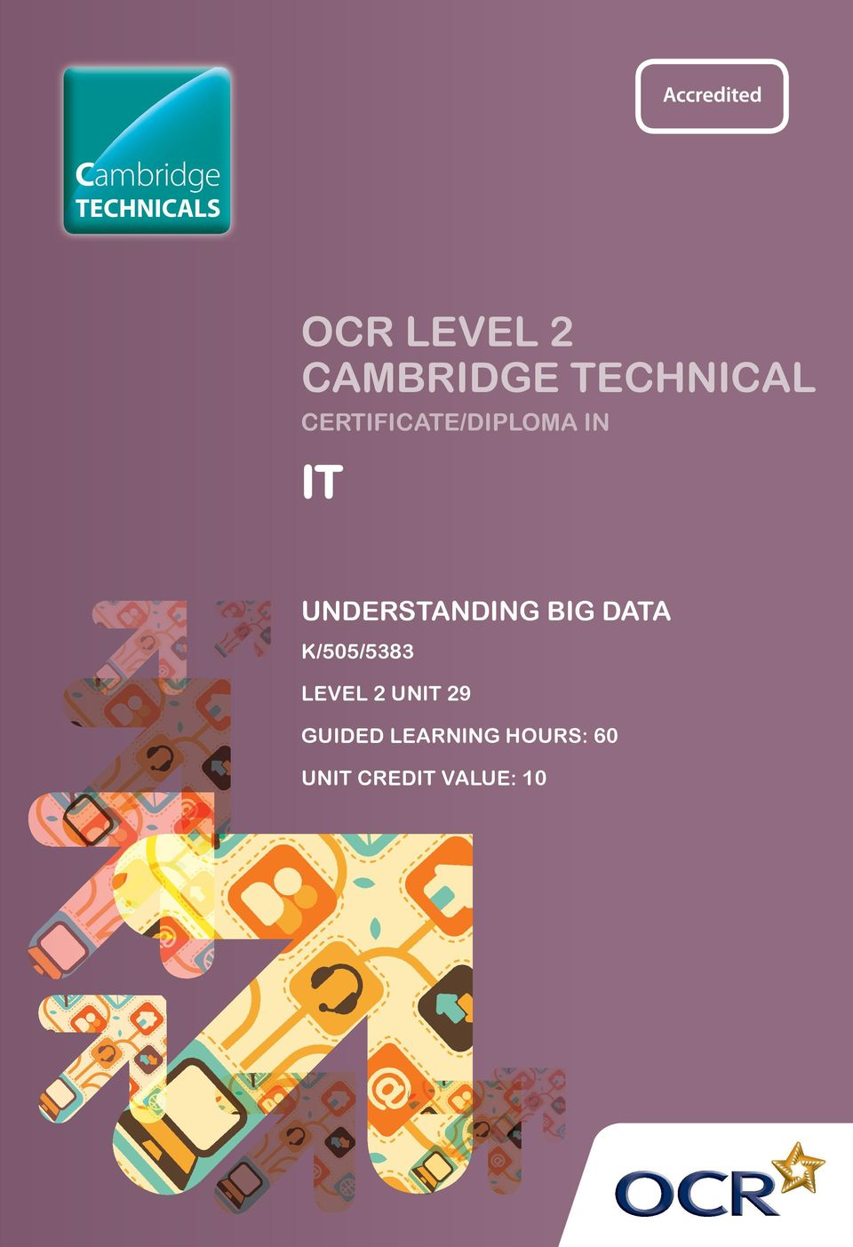 UNDERSTANDING BIG DATA K/505/5383 LEVEL 2