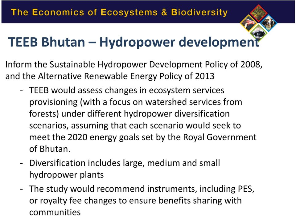 scenarios, assuming that each scenario would seek to meet the 2020 energy goals set by the Royal Government of Bhutan.