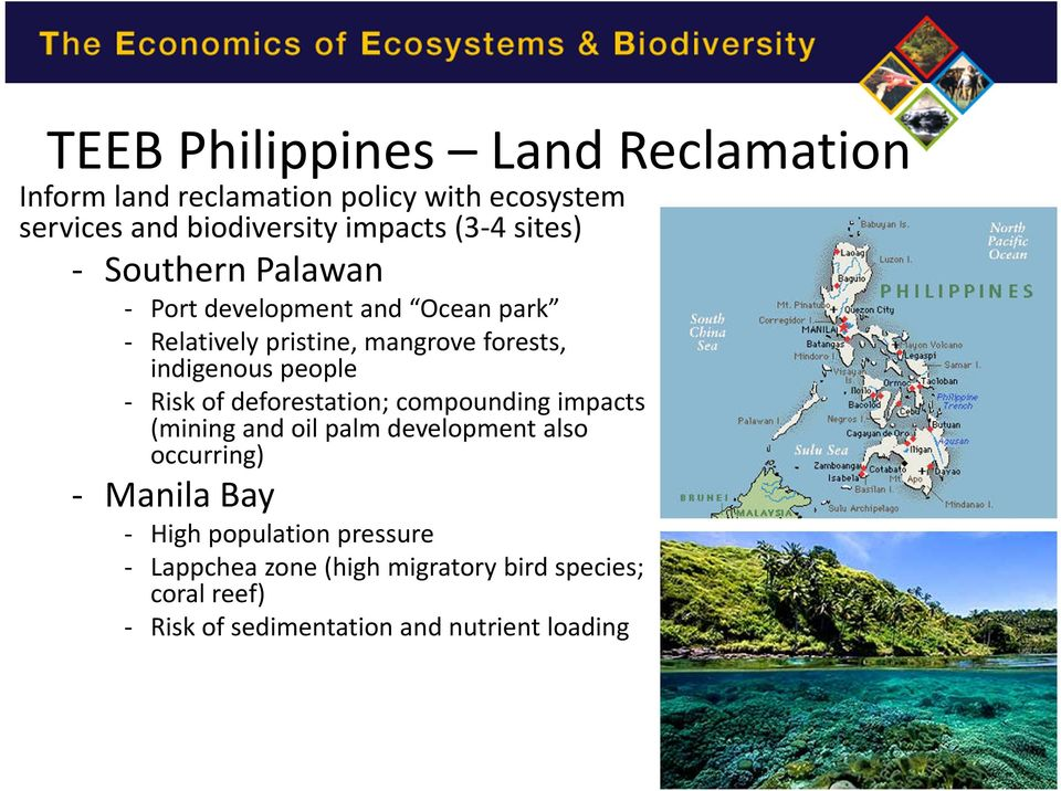 - Risk of deforestation; compounding impacts (mining and oil palm development also occurring) - Manila Bay - High