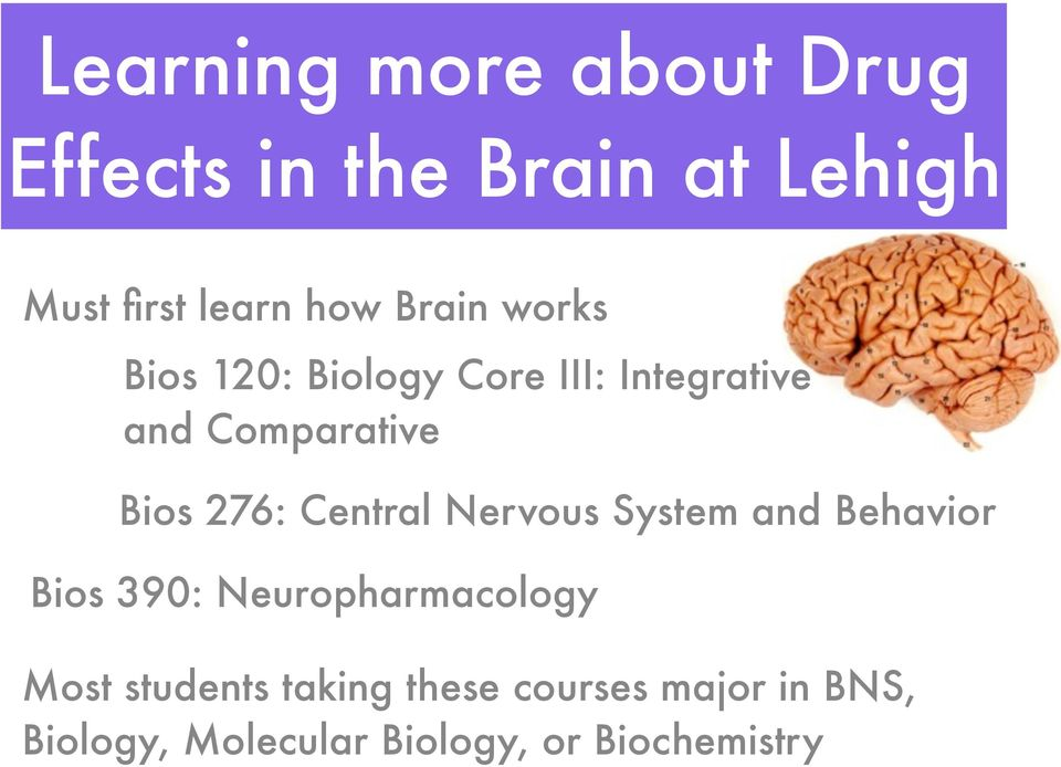 Central Nervous System and Behavior Bios 390: Neuropharmacology Most students