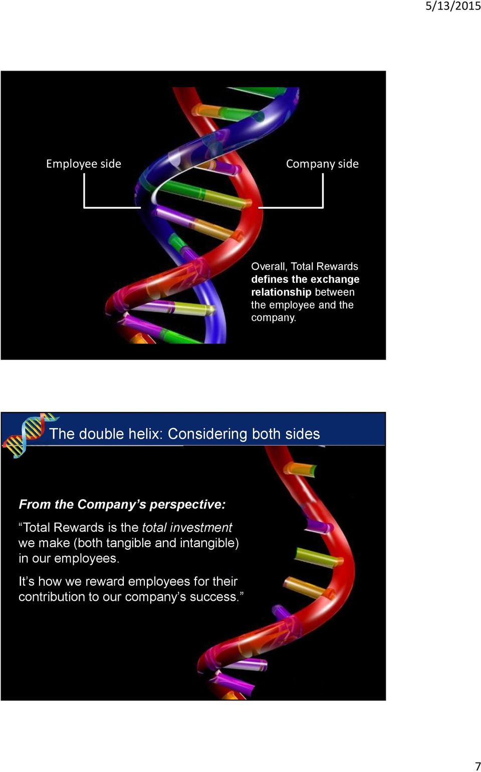 The double helix: Considering both sides From the Company s perspective: Total Rewards is