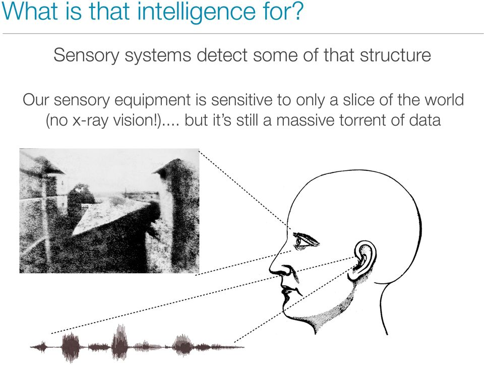 sensory equipment is sensitive to only a slice of