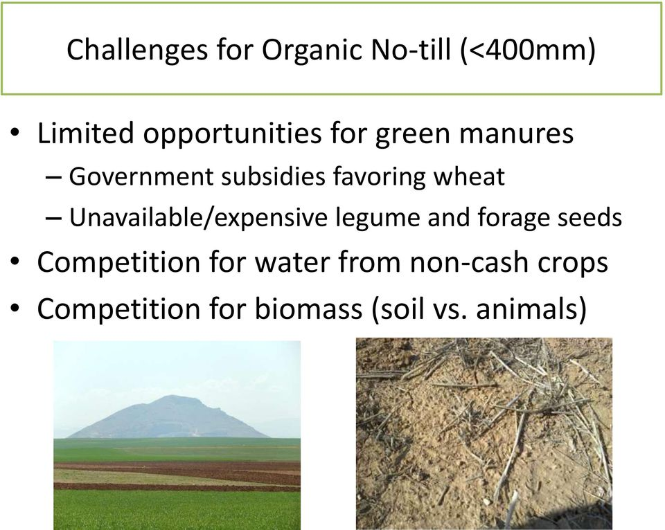 Unavailable/expensive legume and forage seeds Competition for