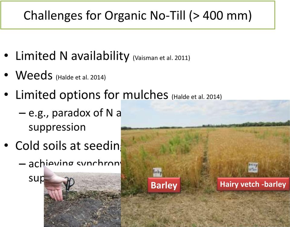 , paradox of N availability and weed suppression Cold soils at seeding (Podolsky 2013)