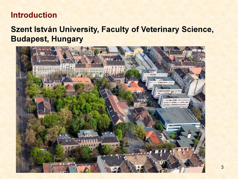 Faculty of Veterinary