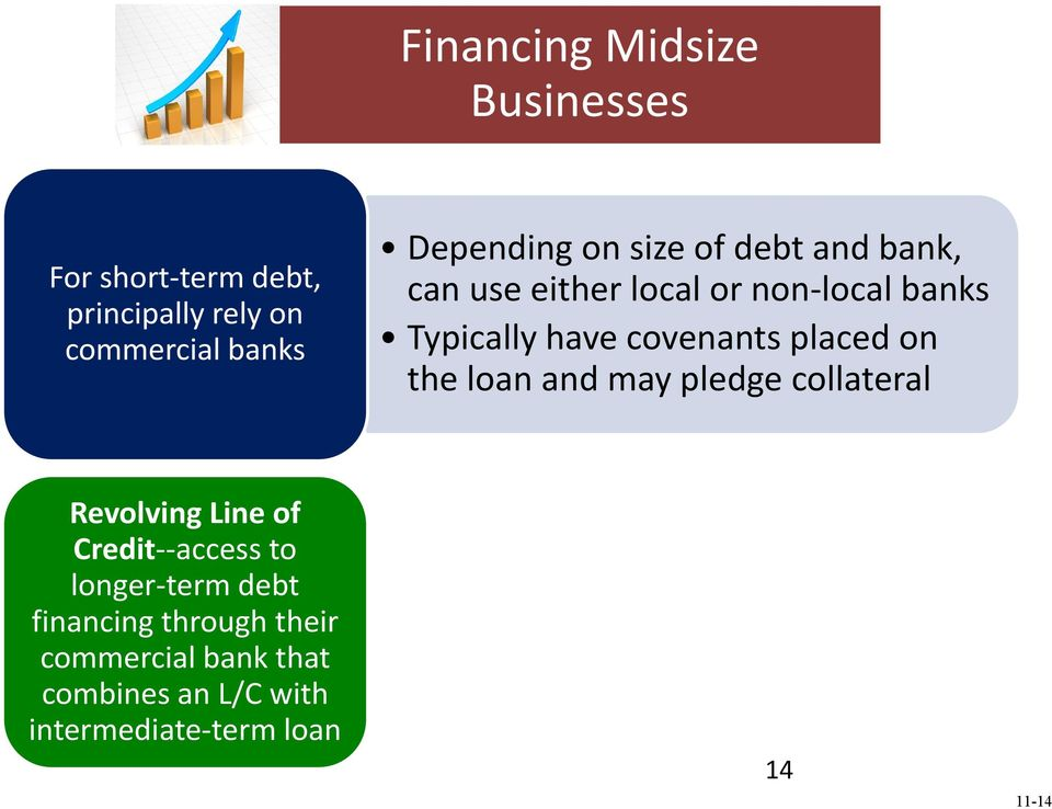 placed on the loan and may pledge collateral Revolving Line of Credit--access to longer-term