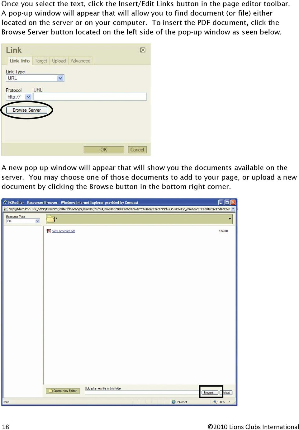 To insert the PDF document, click the Browse Server button located on the left side of the pop-up window as seen below.