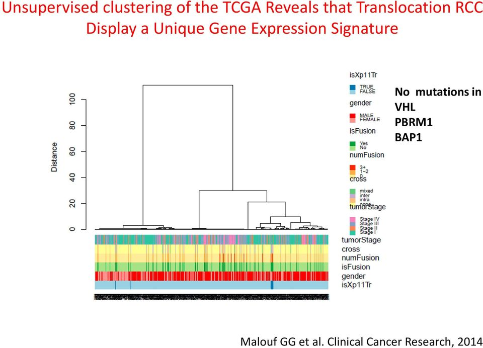 clustering of the TCGA Reveals that