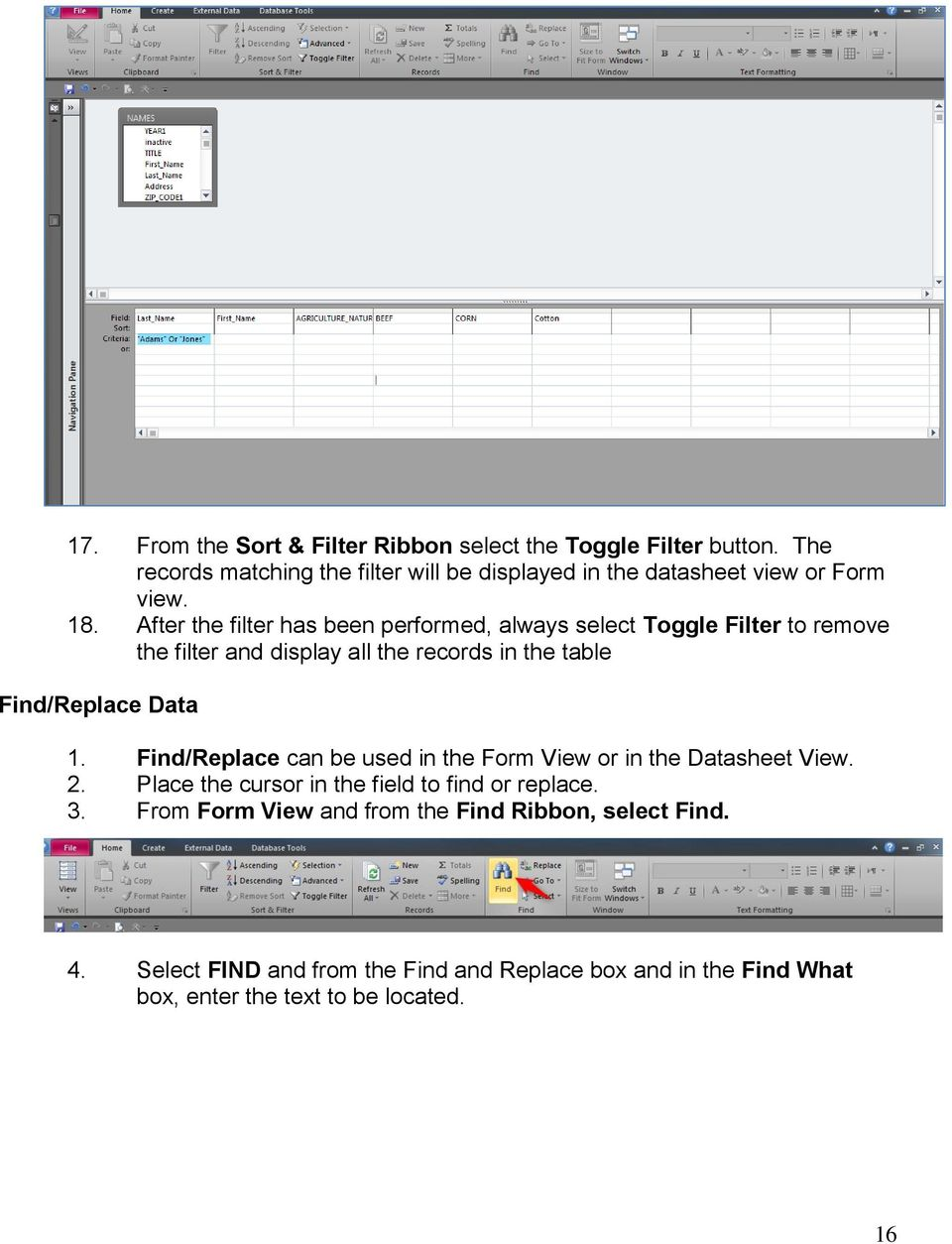 After the filter has been performed, always select Toggle Filter to remove the filter and display all the records in the table Find/Replace Data 1.