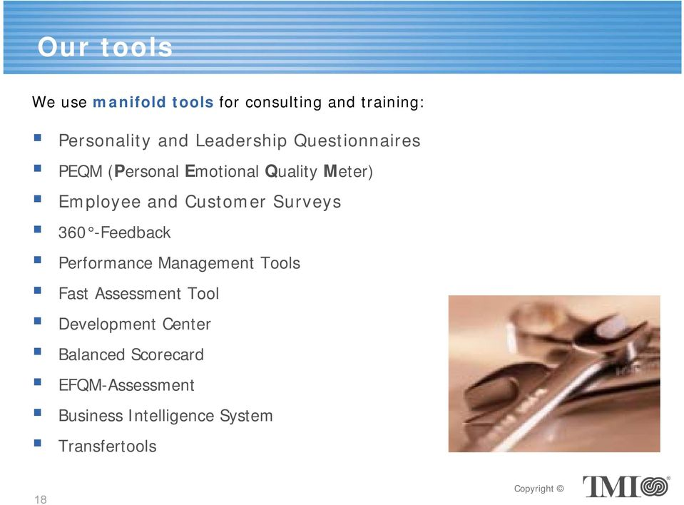 Customer Surveys 360 -Feedback Performance Management Tools Fast Assessment Tool