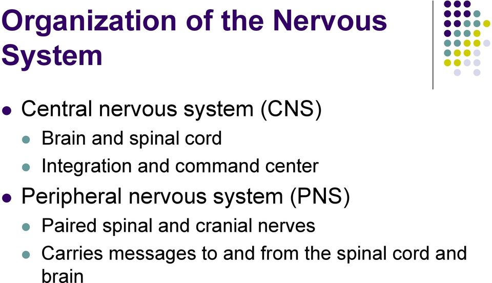 Peripheral nervous system (PNS) Paired spinal and cranial
