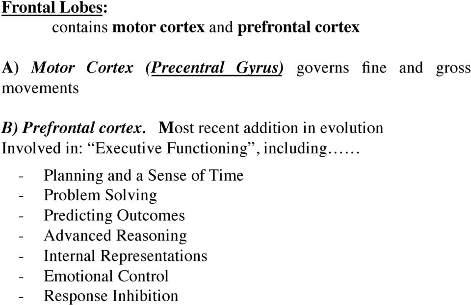 Most recent addition in evolution Involved in: Executive Functioning, including - Planning and a