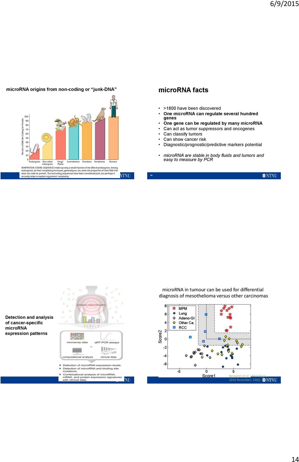 potential microrna are stable in body fluids and tumors and easy to measure by PCR 54 microrna in tumour can be used for differential diagnosis of