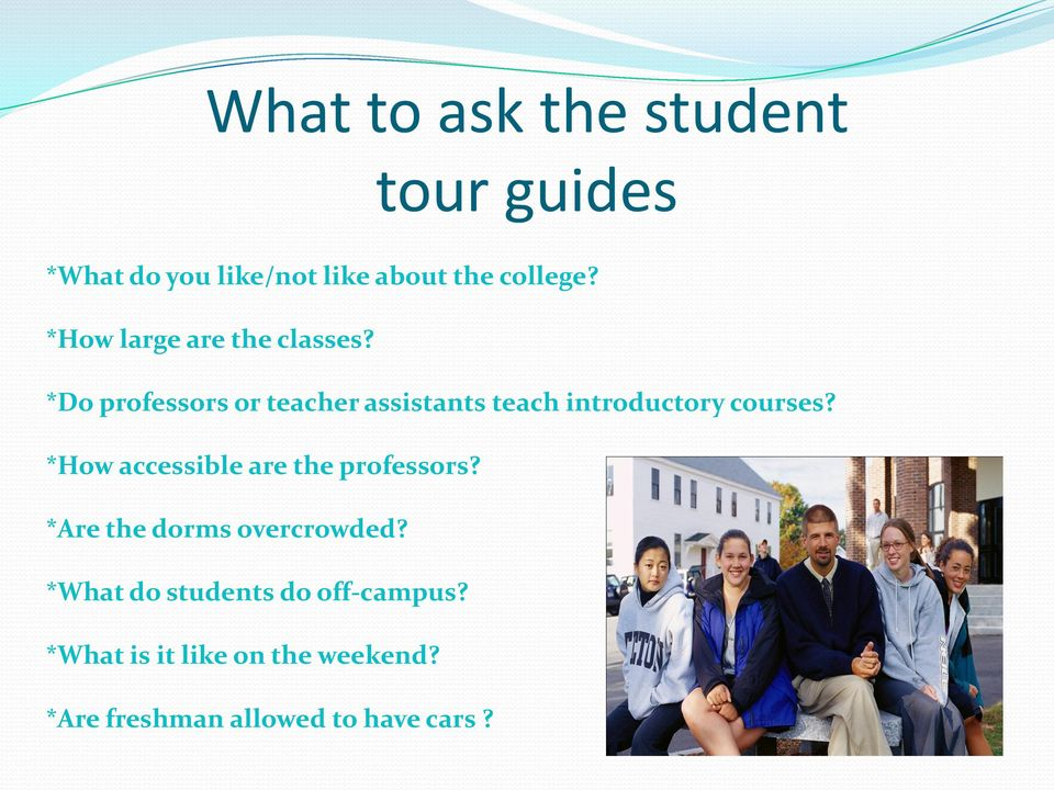 *Do professors or teacher assistants teach introductory courses?