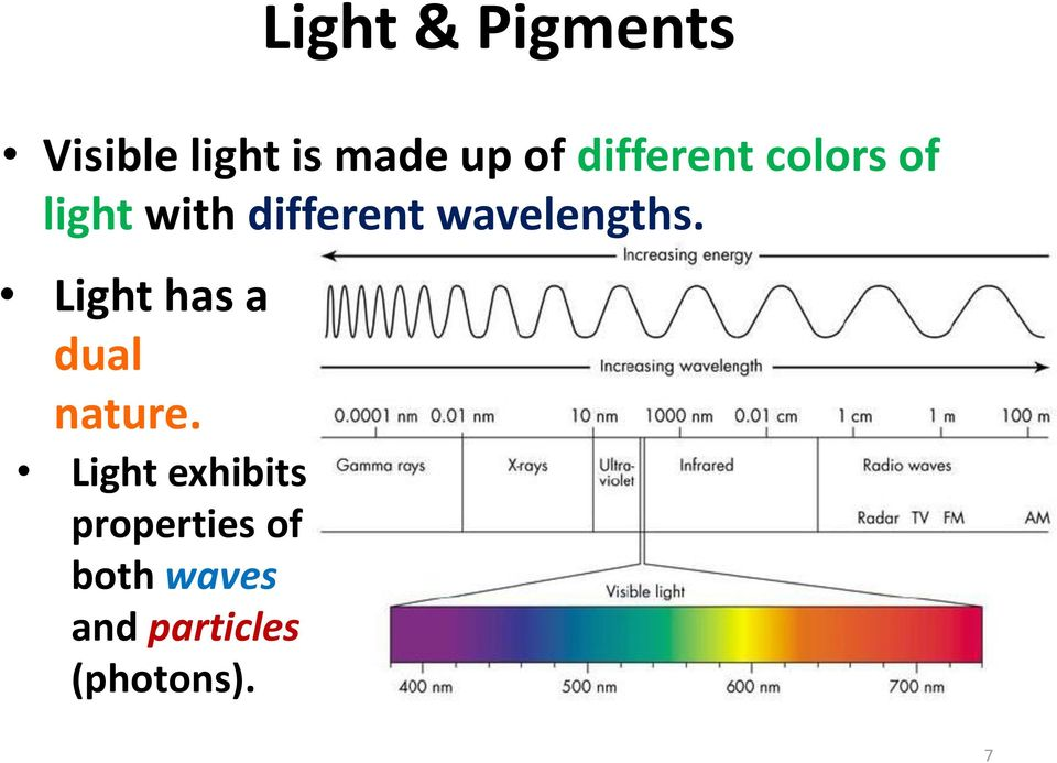 wavelengths. Light has a dual nature.