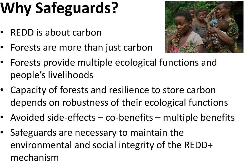 functions and people s livelihoods Capacity of forests and resilience to store carbon depends on