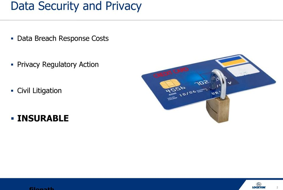 Privacy Regulatory Action