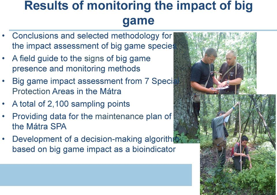 assessment from 7 Special Protection Areas in the Mátra A total of 2,100 sampling points Providing data for the