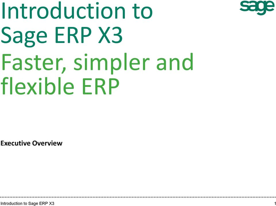 flexible ERP Executive