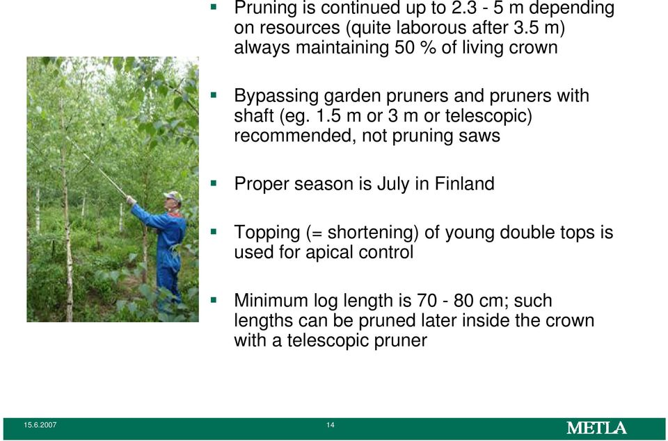 5 m or 3 m or telescopic) recommended, not pruning saws Proper season is July in Finland Topping (= shortening) of