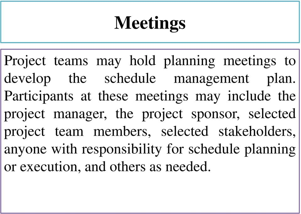 Participants at these meetings may include the project manager, the project