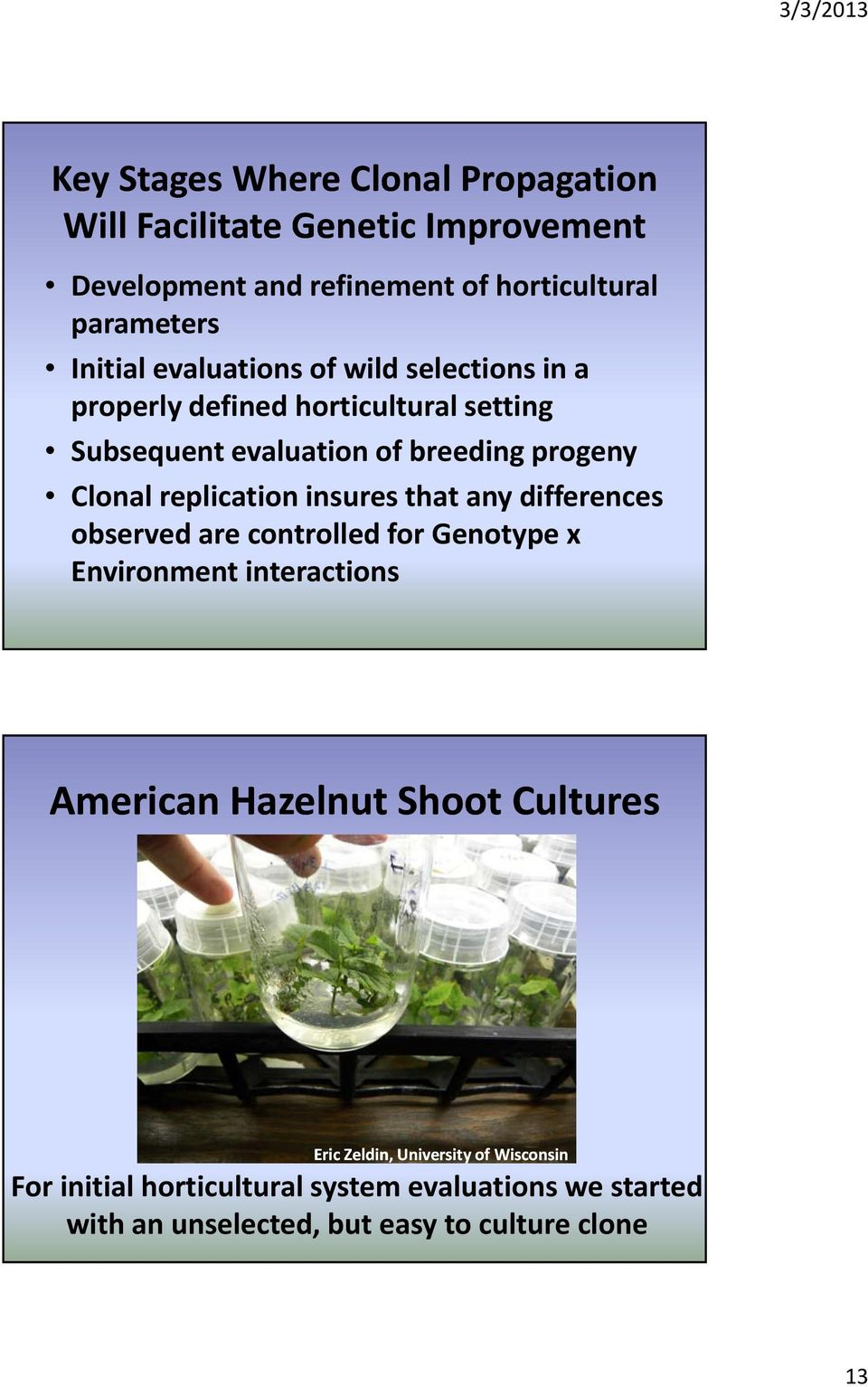 replication insures that any differences observed are controlled for Genotype x Environment interactions American Hazelnut Shoot