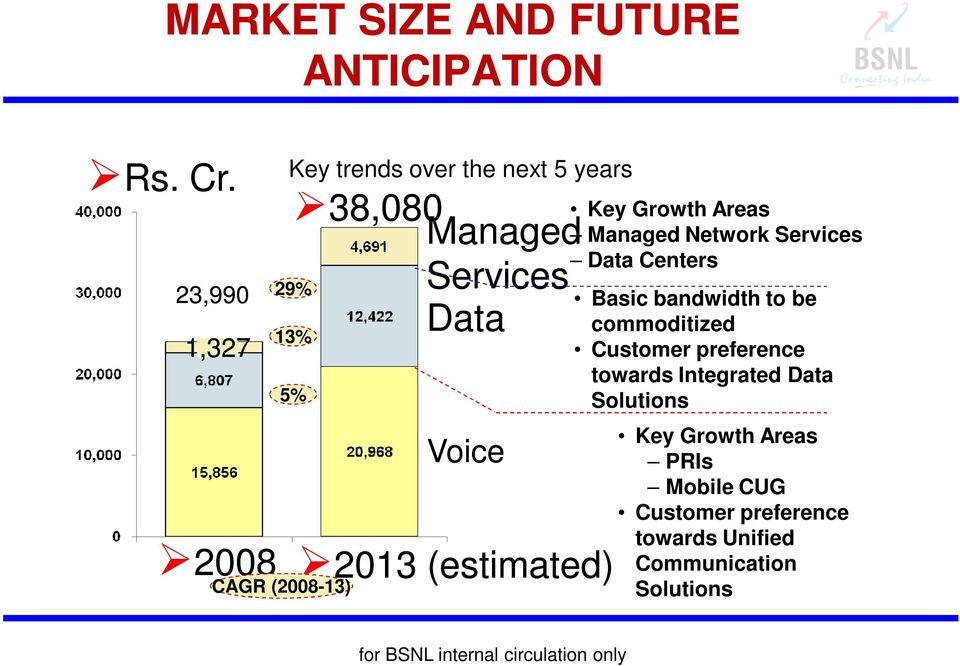 (2008-13) Voice 2013 (estimated) Key Growth Areas Managed Network Services Data Centers Basic