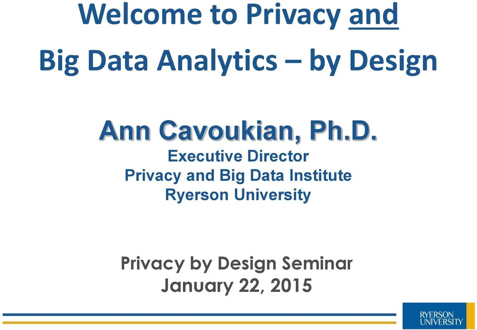 Director Privacy and Big Data Institute