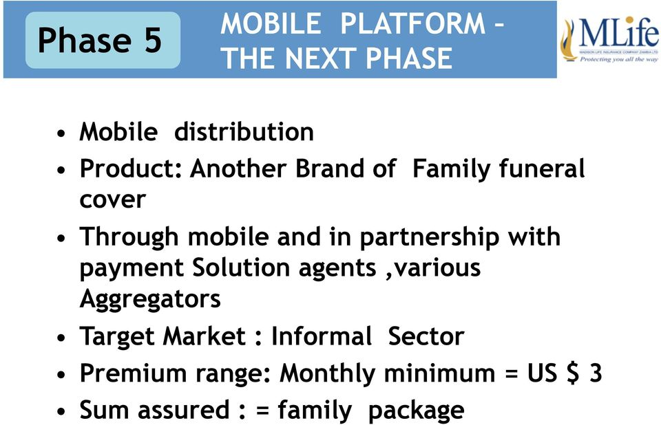 with payment Solution agents,various Aggregators Target Market :